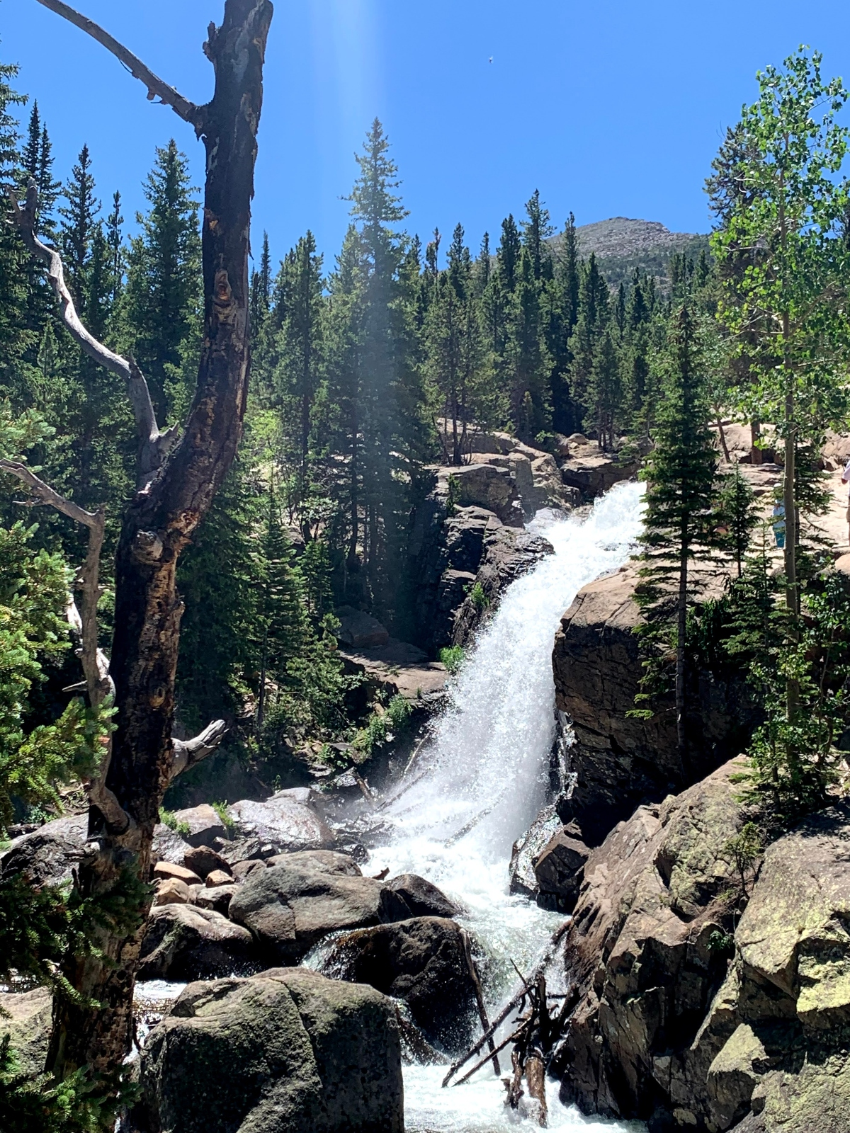 Waterfall at Rocky Mountain National Park